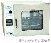 DHG-9123A电热鼓风干燥箱(台式)