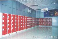 100储物柜-员工储物柜-工厂防尘储物柜