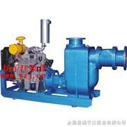 自吸泵:XBC型柴油机式自吸排污泵