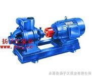 W型-漩涡泵:W型双级漩涡泵