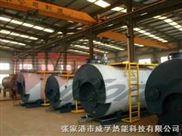 WNS-燃气蒸汽锅炉1T/H板式杀菌、灌装线专用