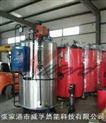 立式燃气蒸汽锅炉500kg/小时 锅炉产品省油省电