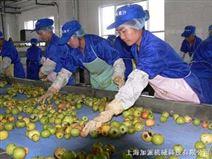 果汁生产线