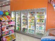 海尔劲力通宝白雪冰柜冷藏柜