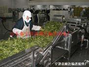 果蔬清洗网带 蔬菜分拣机网带 清洗杀菌网带