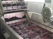 供应蓝莓酱生产线