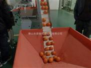 水果包装机 小型水果包装机