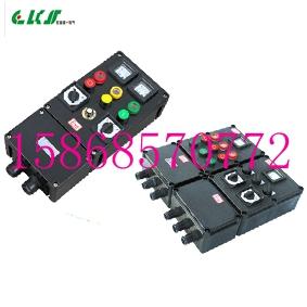 BXM8050防爆防腐配电箱BXM8050-3/63K100G3/4XX