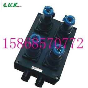 BXX8050-4/32A防爆防腐电源插座箱 IP65(塑壳)