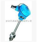WRNB-320G一体化热电偶/热电阻