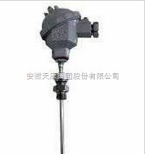 WZPK-131防水式鎧裝熱電偶