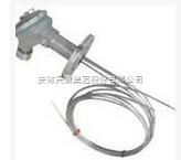 WRE-230D多点热电偶