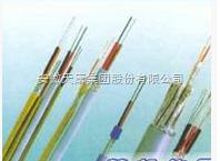 ia-EX-GS-VVR补偿电缆