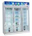 广州商用冷柜展示柜