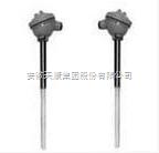 WZP2F-430防腐热电阻