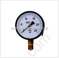 YN-100B耐震压力表