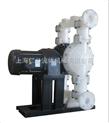 电动聚丙烯隔膜泵RGD50\气动隔膜泵、手动隔膜泵