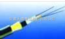 供应天康GYTY53架空光缆
