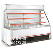 深圳白雪冷柜 东莞厨房冰柜 汕头冷藏柜尺寸 冰蒂冷柜