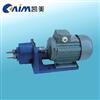 S型微型输油泵,齿轮油泵