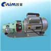 WCB微型齿轮油泵,不锈钢齿轮泵,不锈钢齿轮油泵