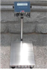 电子台秤—防暴功能,30公斤防爆秤,50公斤防爆电子秤