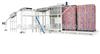 BWXD800自动空罐卸垛机(带自动堆板)