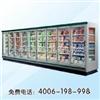 LFG-C风幕柜 鲜奶风幕柜